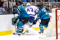 NHL: FEB 28 Maple Leafs at Sharks