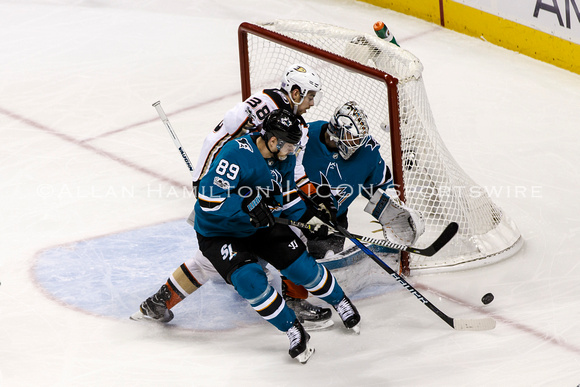 NHL: NOV 04 Ducks at Sharks